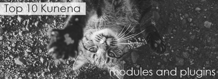 Top 10 Kunena modules and plugins overview